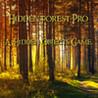 Hidden Forest Pro : A Hidden Object Game. Image