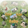 Zoo for Baby Image