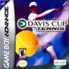Davis Cup Tennis Image