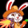 Rabbit CowBoy Link Image