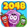 2048  Farm  Version Image