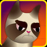 A Grumpy Cat Race - Kids Racing Game Image