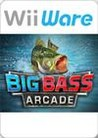 Big Bass Arcade Image