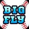 Big Fly Baseball Image