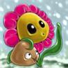 A Pocket Flower Image