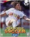 Worldwide Soccer Image
