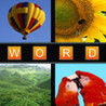 Word in 4 Pictures Image