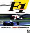 F1 Racing Simulation Image