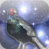 Raider Pheasant Image