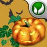 Halloween Bermuda-Rectangle Image