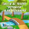 Caccia al tesoro botanica in Val Rosandra Image