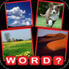 Find the Word? Pics Guessing Quiz Image