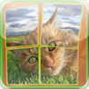 Cats Slidy Puzzle - sliding puzzle for kids Image