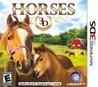 Horses 3D Image