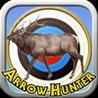 Arrow Hunter Image