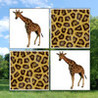 Memorize Zoo Image