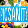 PicSanity Image