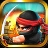 Ninja Raiders Image