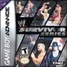 WWE Survivor Series Image