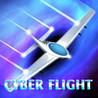 Cyber Flight Image