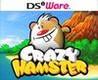Crazy Hamster Image