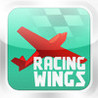Racing Wings Image