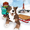 Sled Dog Racer Image
