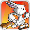 RabbitDash Image