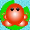 Pocket Frog 2 Image