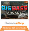 Big Bass Arcade: No Limit Image