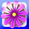 Flower Garden Image