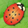 Sara's Ladybugs Image