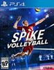 Spike Volleyball Product Image