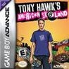 Tony Hawk's American Sk8land Image