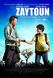 Zaytoun Image