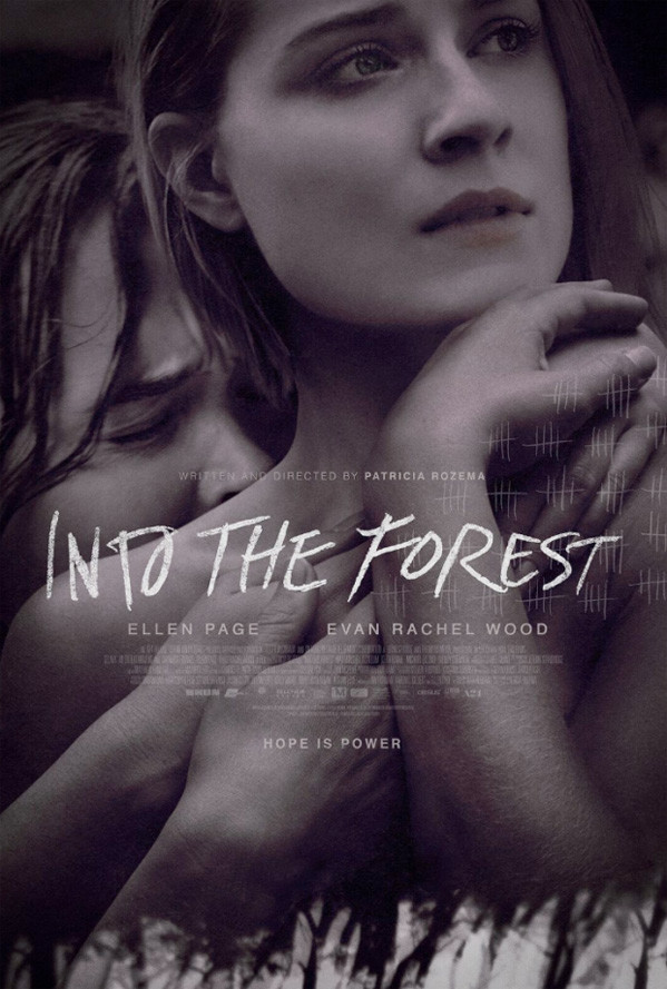 into the forest book summary