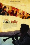 The Black Tulip Image