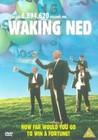 Waking Ned Devine Image