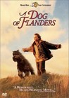 A Dog of Flanders Image