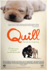 Quill: The Life of a Guide Dog Image