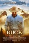Buck Image