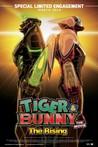 Tiger & Bunny: The Rising Image