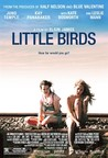 Little Birds Image
