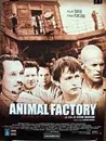 Animal Factory Image