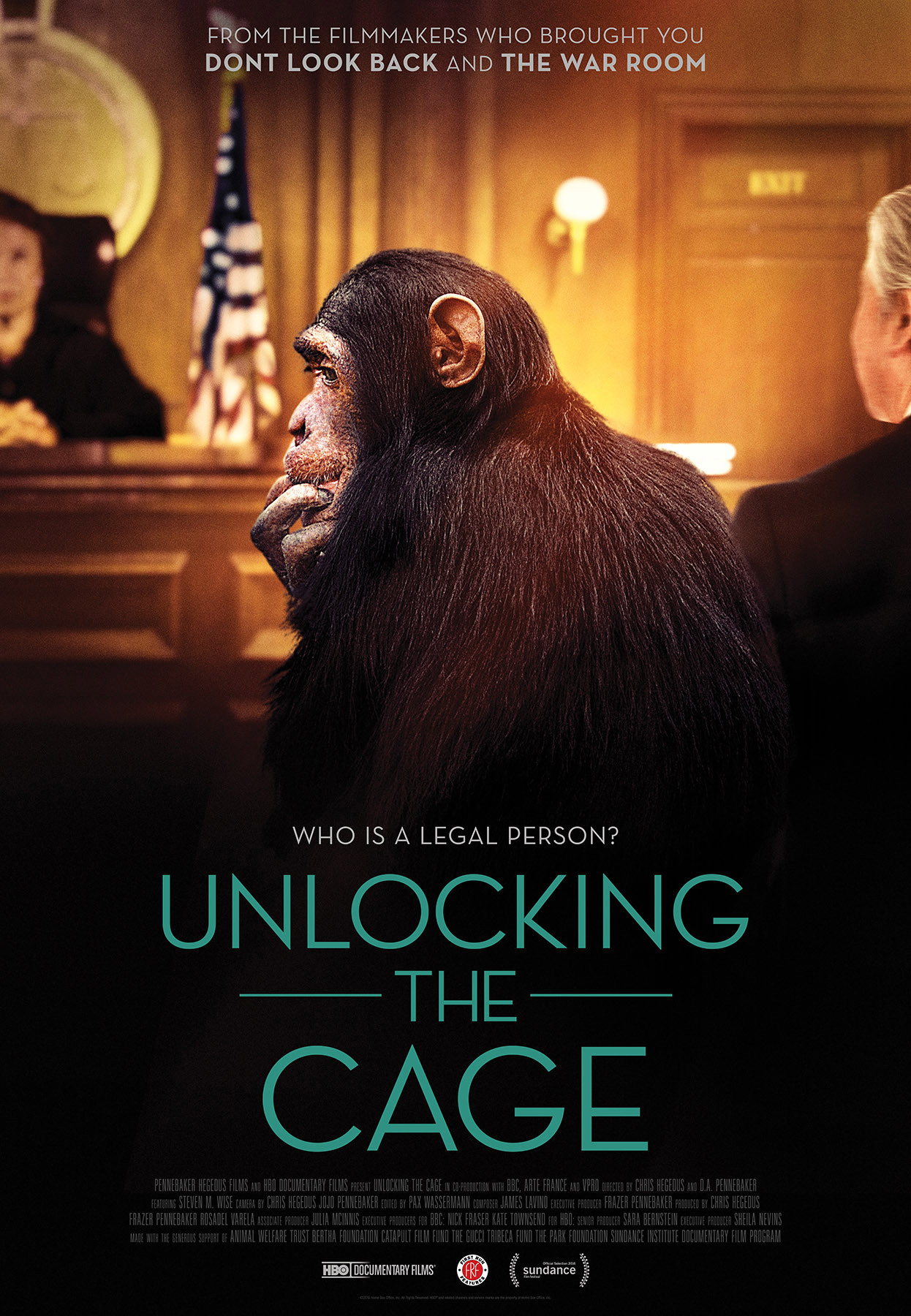 Unlocking the Cage movie poster