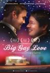 Big Gay Love Image
