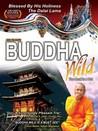 Buddha Wild: Monk in a Hut Image