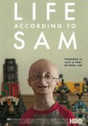 Life According to Sam Image