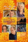 The Best Exotic Marigold Hotel Image