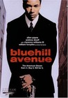 Blue Hill Avenue Image